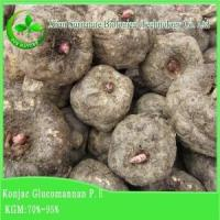 Quality Weight Loss Konjac Extract wholesale