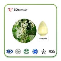 China Quercetin Extract on sale