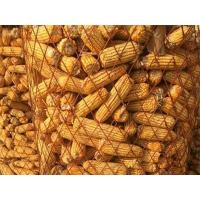 Buy cheap Expanded Metal Corn Cage Saves Space and Avoid Mildew from wholesalers