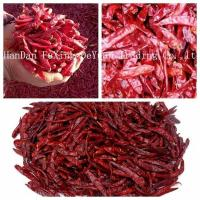 Quality Chillis Red Chilli Importers wholesale