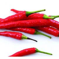 Buy cheap Chillis Export Fresh Chinese Chilli from wholesalers