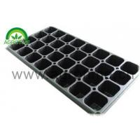 Quality Seed Tray wholesale