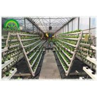 Quality Hydroponics Systems wholesale