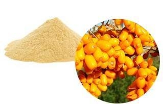 Cheap Seabuckthorn fruit (whole, cuts, powder, extract powder, juice powder) for sale