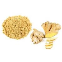 Quality Organic Whole Ginger Root Extract Powder wholesale