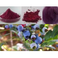 Buy cheap Nutraceuticals BILBERRY EXTRACT from wholesalers