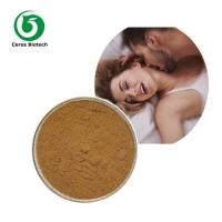 Quality Damiana Extract for Improving Sexual Performance wholesale