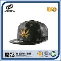 Popular 5 panels young mens snapback hat printed and patch brand