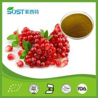 Quality Cosmetic Ingredients Pomegranate Extract wholesale
