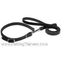 Quality Police / hunting dog leash and collar (combo) wholesale