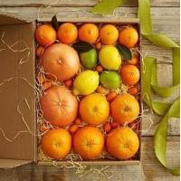 Quality Simply Fresh Winter Citrus NO.2 shenzhen gift hamper delivery wholesale