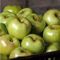 Quality GREEN APPLES NO.33 deliver gift hamper to shenzhen wholesale