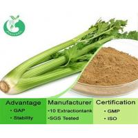 Quality Celery Seed Extract wholesale