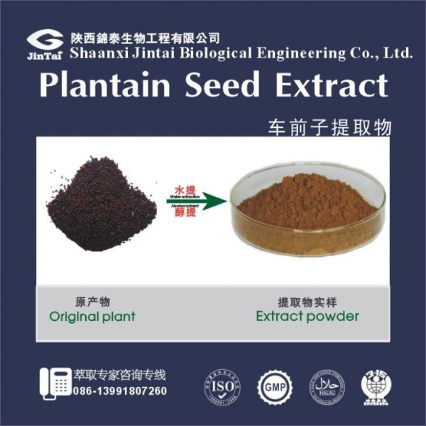 Cheap Plant Extract for sale
