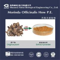 Quality Herb Medicine natural organic morinda radix extract/organic morinda officinalis extract wholesale