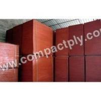 Quality Film Faced Shuttering Plywood wholesale