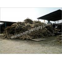 Buy cheap Timber Wood from wholesalers
