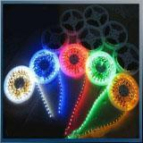 Quality Led Lamps Plastic & Polymer 12V RGB Flexible LED Light Strip with 5m/Roll wholesale