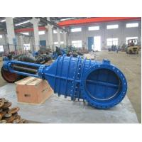 Quality BS 5163 Metal Seated Wedge Disc Ductile Iron Gate Valve wholesale