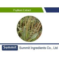 China Psyllium Seed Powder extract,Psyllium Husk Powder,Plantago Psyllium Extract on sale