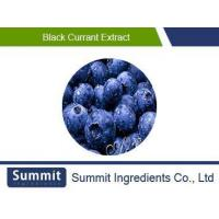 Buy cheap Black Currant Extract 5:1, Black Gallon Extract, Ribes nigrum L. from wholesalers