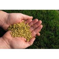 Quality Corn Gluten Meal wholesale