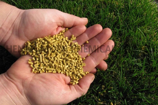 Cheap Corn Gluten Meal for sale
