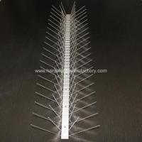 China Stainless Steel Bird & Pigeon Spikes Anti Bird Spikes for Buildings on sale