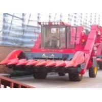 Quality TR9988-7A Self-propelled Corn Combine Harvester wholesale