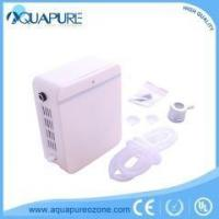 Quality Latest Tech 110/220V Tube O3 Ozonator 2000mg For Air Water And Medical Treatment wholesale
