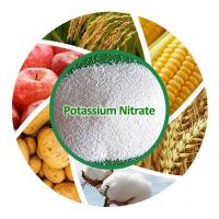 China Chemicals Fertilizer Factory Price 13-0-45 Potassium Nitrate on sale