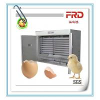 Buy cheap FRD-3168 High technology high quality and best selling egg incubator for chicken/duck/quail from wholesalers