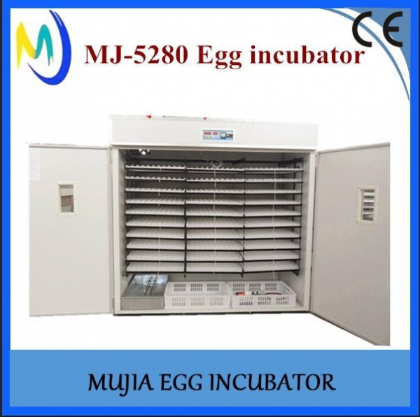 China Best selling items Automatic egg incubator 5000 chicken eggs incubator for sale
