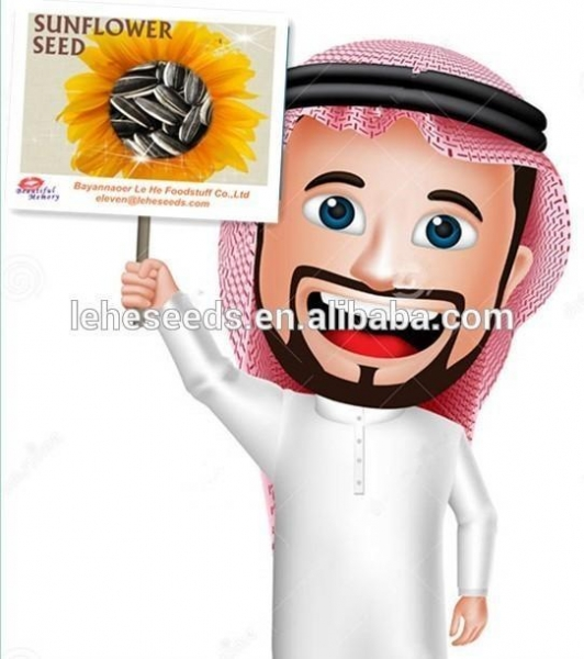 China The best price of sunflower seeds for Oman market