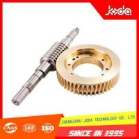 China Hot Selling Good Quality Precision Finishing Parts Worm and Gear on sale