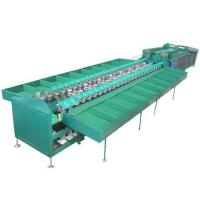 Quality Double Line Type Fruits and Vegetable Sorting Machine wholesale