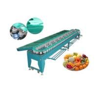 Quality Ellipse Type Fruits and Vegetable Sorting Machine wholesale