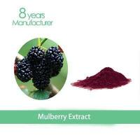Quality Mulberry Leaf P.E. 10:1 1% wholesale