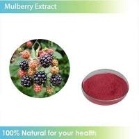 Quality Mulberry Fruit Extract wholesale