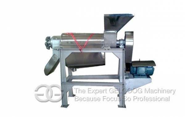 Cheap Vegetable Juice Extractor Machine for sale