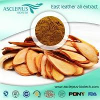 China Tongkat Ali Root Extract Powder Supplement Supplier Wholesale on sale