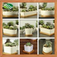 Buy cheap Modern Decorative White Ceramic Succulent Plant Pot W/ Bamboo Draining Tray from wholesalers