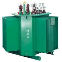 Oil-immersed transformer series
