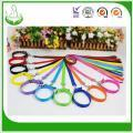 China Factory Wholesale Laciness Pet Leashes and Collar on sale