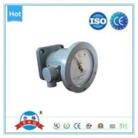 Quality High Quality Level Gauge of Power Transformer Oil Level Indicator wholesale