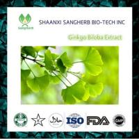 China 100% natural ginkgo biloba leaves extract powder with best p on sale
