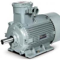 China SIEMENS 1MT0, Beide explosion-proof motor on sale