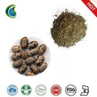 Quality 100% Natural Castor Beans Seed Extract wholesale
