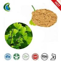 Quality High Quality Gingko Biloba Extract Powder wholesale