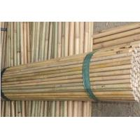 Quality High Quality Bamboo Pole Natural, Raw Bamboo Pole, Solid Bamboo Pole, wholesale